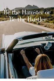 be the hamster or be the hustler u2014 alycia wicker interior design