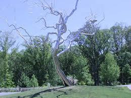 bridges silver tree evolved mommyevolved