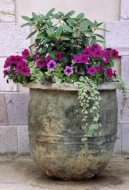 great flower pot ideas for patio building a dream house front