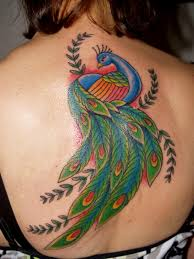 peacock feather tattoos designs yahoo search results tatoos