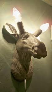 Dinosaur Head Wall Mount 158 Best чучело Images On Pinterest Faux Taxidermy Animal Heads