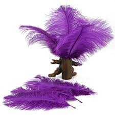 10pcs home decor purple ostrich feathers purple amazon ca sports