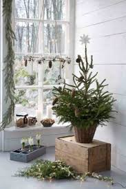 Pre Lit Mini Christmas Tree - canvas pre lit bromley fir potted christmas tree is 6 u0027 1 82 m