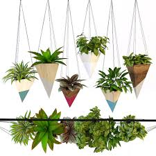hanging plant 3d model in small plants 3dexport