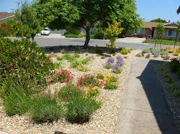 garden design ideas low maintenance ideas for low maintenance garden small design coastal and