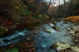 West Virginia Scenery images File autumn forest creek scenery west virginia forestwander jpg