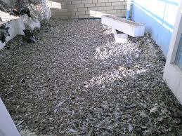 tauben auf dem balkon a j exem schädlingsbekämpfung kammerjäger hannover entrümpelung