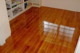 wood floor cleaning carpet cleaning brandon fl
