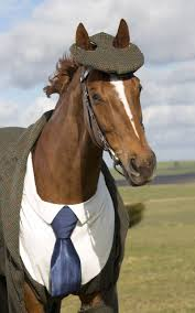 a horse wore a suit today gq