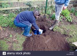 pet burial stock photos u0026 pet burial stock images alamy