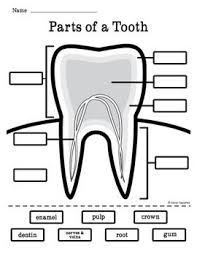 32 best dental health images on pinterest teeth dental