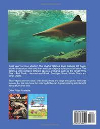sharks coloring book kids sharks activity book kids