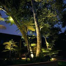 Outdoor Hanging Lights For Trees Hanging Tree Lights Hang Hanging Outdoor Tree