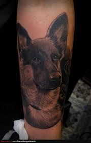 dog tattoos tatto design of portrait tattoos dog