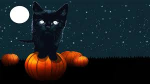 halloween kitties background black cat halloween background clipartsgram com