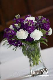 Purple Carnations Best 25 Purple Carnations Ideas On Pinterest Purple Carnation