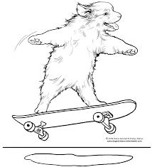 skateboarding dog coloring page by diane degroat u0026 shelley rotner
