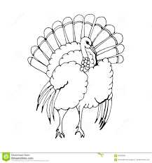 hand draw a turkey in the style of a sketch on a stock vector