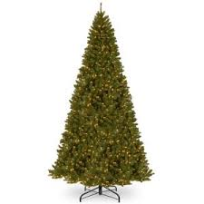 national tree company 16 ft kingswood fir pencil tree kw7 500 160