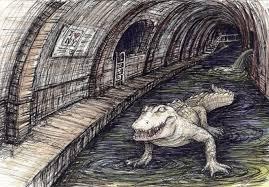 sewer alligator cryptid wiki fandom powered by wikia