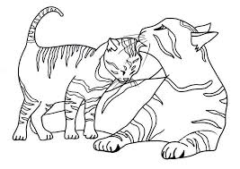 Free Printable Cat Coloring Pages For Kids Cat Coloring Pages