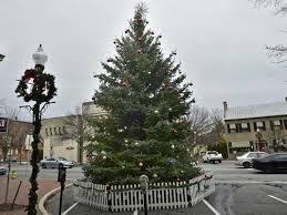 hanover area christmas tree recycling