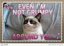 grumpy cat valentines best cat s day greetings living without a why