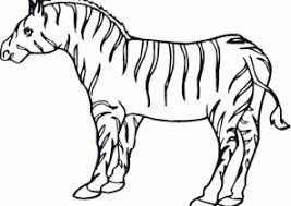 zebra coloring pages coloring4free