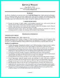 Risk Management Resumes Credit Manager Resume Resume For Your Job Application