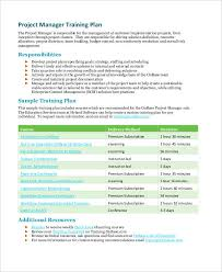 35 project plan examples