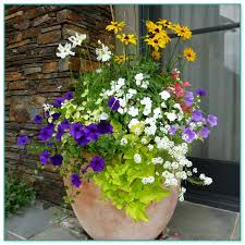container flower gardening ideas 14