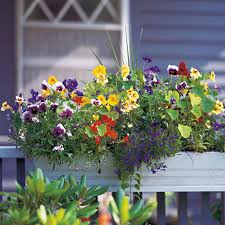 Walmart Planter Box by Ideas For Deck Railing Planters Containers Front Yard