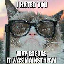 Grouchy Cat Meme - 20 best grumpy cat memes that will surely make you smile