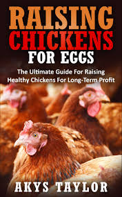 buy raising chickens answers to the most common questions about