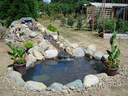 fish pond waterfall ideas 75 relaxing garden and backyard