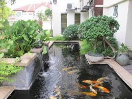 beautiful garden concept applied for glorious home ponds perfected