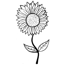 17 black and white pictures of flowers free printable