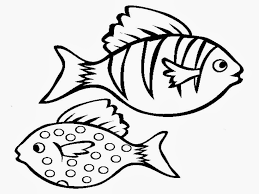 100 ideas realistic fish coloring pages on www gerardduchemann com
