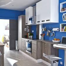 facade de cuisine leroy merlin facade meuble de cuisine luxe cuisine leroy merlin delinia excellent