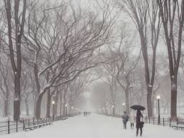Worst Snowstorms In History Nyc U0027s Blizzard Is Going To Be Historic Business Insider
