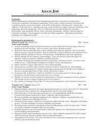free sle resume exles program manager resume sle management sles obje