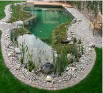 moen backyard swimming hole