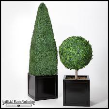 4 outdoor boxwood obelisk topiary