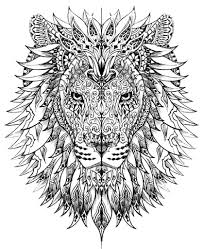 realistic lion coloring pages realistic animal coloring pages feed