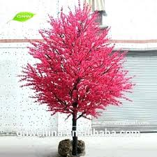 best small landscape trees best small trees ideas on flowering trees