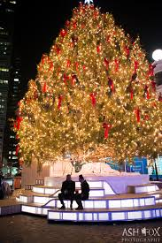 nyc south street seaport christmas tree marriage proposal ash