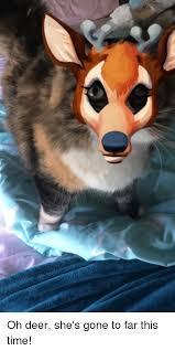 Oh Deer Meme - oh deer she s gone to far this time deer meme on me me