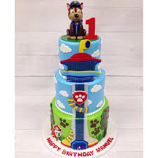 47 finn u0027s cake images cakes paw patrol party