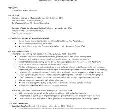 sle professional resume template resume template financial aid counselor after school sle objective