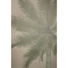 outdoor palm tree l shop coastal natural green rectangular indoor outdoor machine made